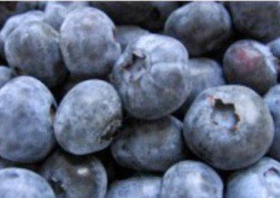 Blueberry Balsamic $19.95